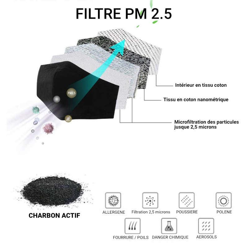 Le filtre à charbon PM 2.5